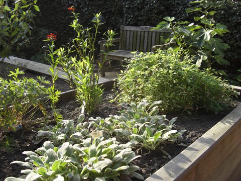 Heemstede patio plantenbak met voelplanten en kruiden